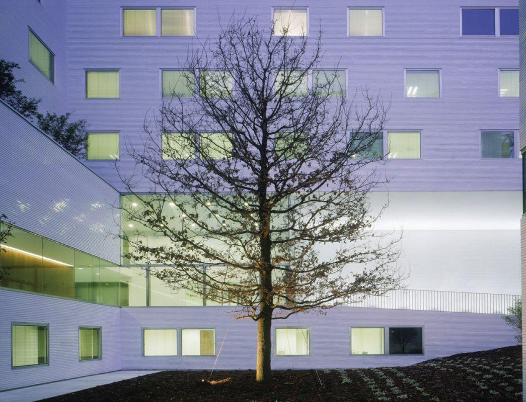 Pôle universitaire de biologie Paris - UFR de Sciences de la Vie et de la Terre